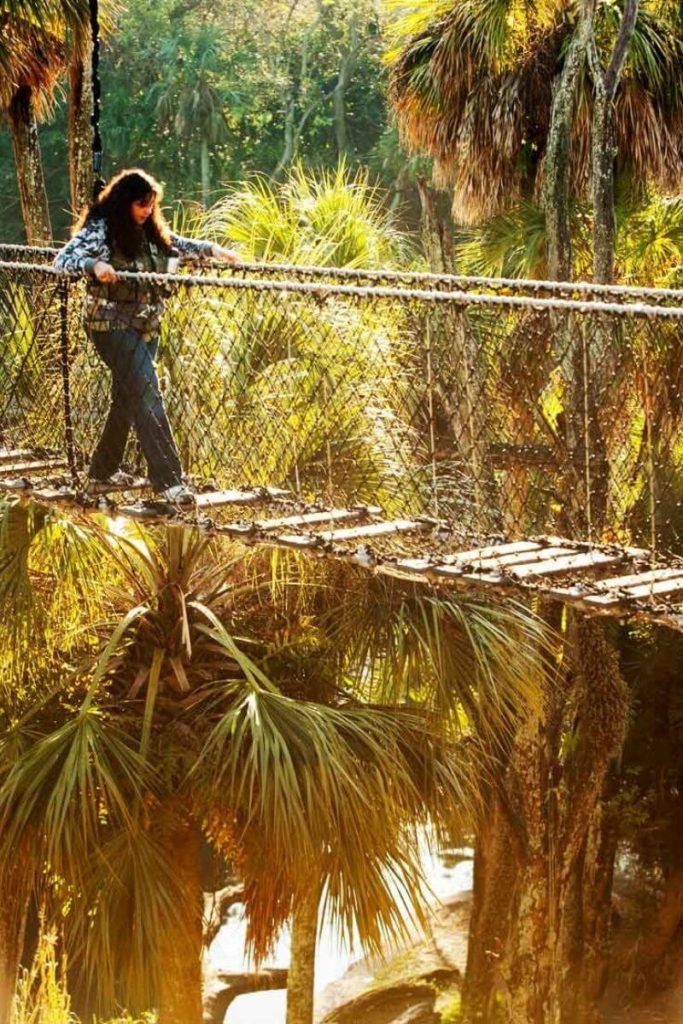 Photo of a young woman crossing a plank bridge over water.
