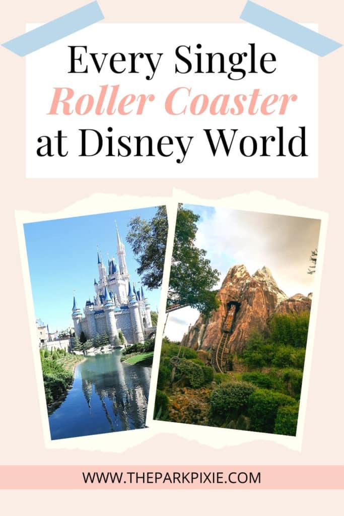 """Text at top reads """"Every Single Roller Coaster at Disney World."""" Photos below, L-R: Cinderella's Castle at Disney World's Magic Kingdom and Expedition Everest roller coaster at Animal Kingdom."""