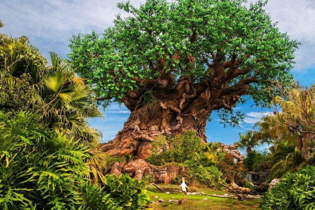 Photo of the tree of life at Disney World's Animal Kingdom.