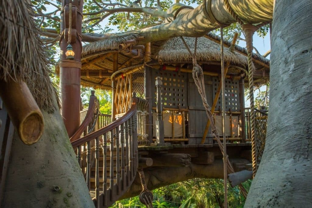 Closeup of the Swiss Family Treehouse attraction at Disney World.